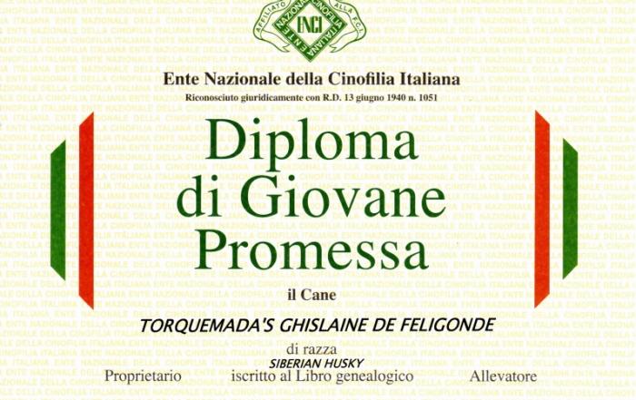 diploma di giovane promessa